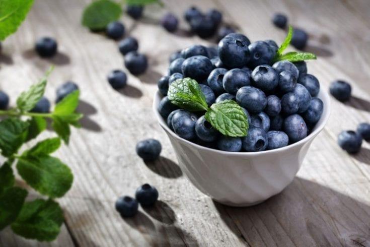 Antioxidants-257223916
