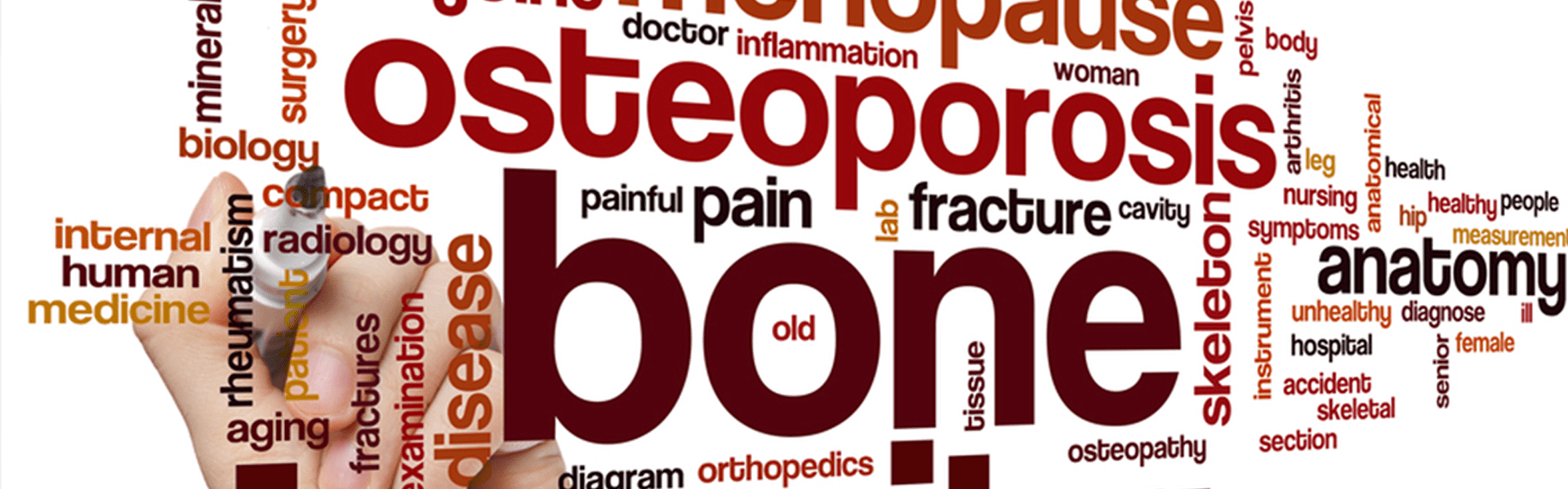 Bone Health & How To Manage Osteoporosis