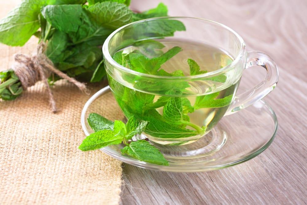 mint tea bloating
