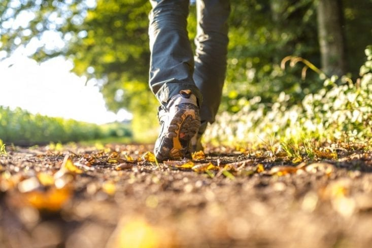 brisk walking weight loss