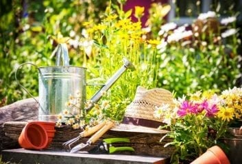 Gardening Can be a Health-Boosting Hobby