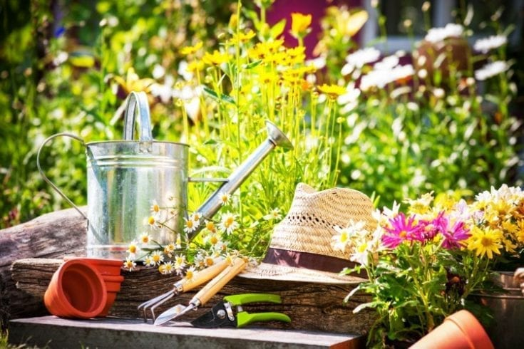 gardening-111443249