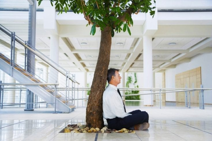 happy-healthy-workplace-146568392