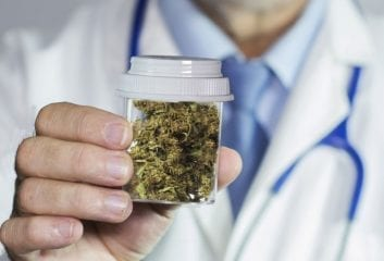Cannabis for Medicinal Purposes: Will it Work to Legalise Cannabis in the UK?