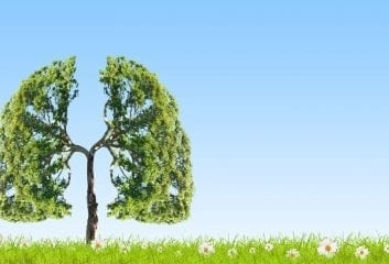 healthy lungs copd